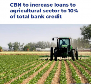 Read more about the article CBN  Increases Bank Credit To The Agricultural Sector